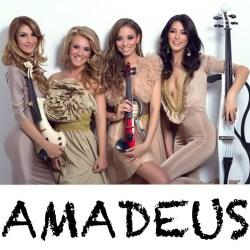 Amadeus pret nunta Image